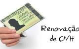 Simulado Renovação da CNH
